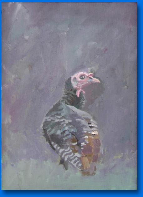JOSEPH SORAH ILLUSTRATOR AND DESIGNER WILD TURKEY STUDY